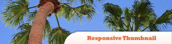Responsive Thumbnail Gallery