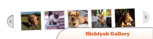 Nishtyak Gallery