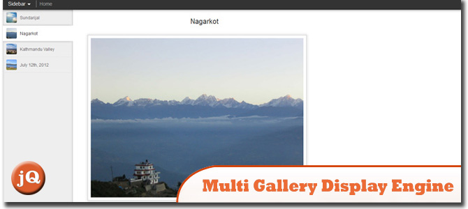 Multi Gallery Display Engine