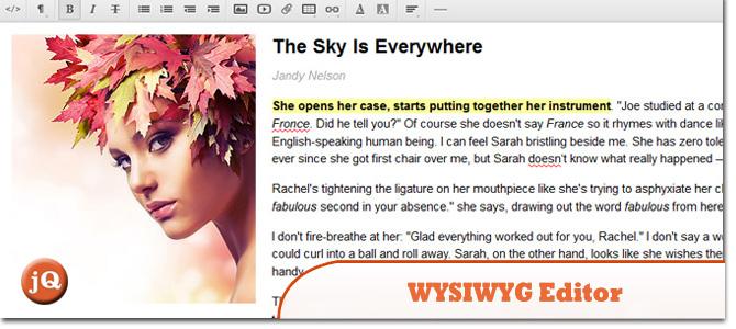 WYSIWYG-Editor.jpg