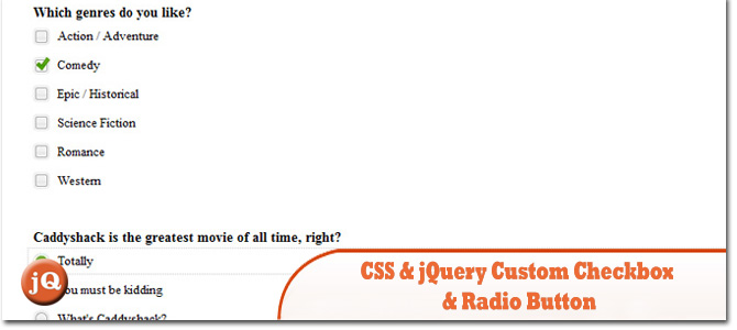 CSS-jQuery-Custom-Checkbox-and-Radio-Button.jpg