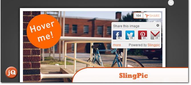 SlingPic.jpg