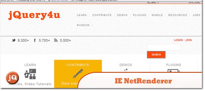 IE-NetRenderer.jpg