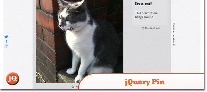 jQuery-Pin.jpg